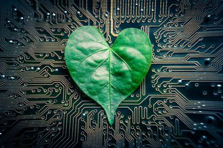 "Engineers design ""tree-on-a-chip"""